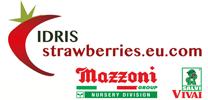 Logo-Idris-Sal-Mazz