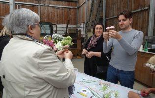 hortifolies-demo-fleuristes